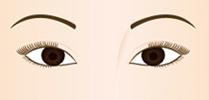 シャープなつり目の完成です。