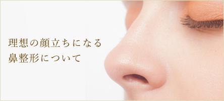 理想の顔立ちになる鼻整形について